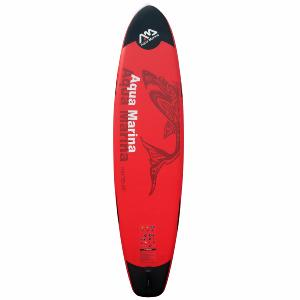 Paddle gonflable 365 cm